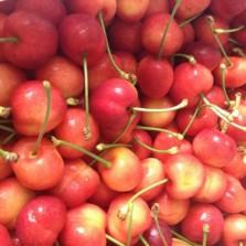 Cherry Vàng Úc